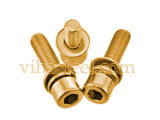 Phosphorous Bronze Sems Screw